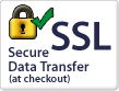 SSL Secure Data Transfer (at checkout)