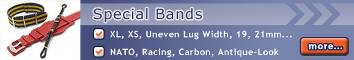 All our Special Bands on Watchbandcenter.com