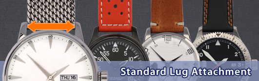 Standard Lug Attachment for a wristwatch